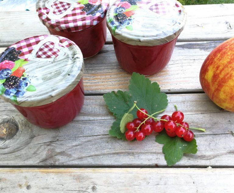 Schnelle und leckere Johannisbeer-Apfel-Marmelade