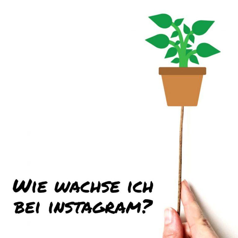 Read more about the article 8 kostenlose Tipps: Wie wachse ich bei Instagram?